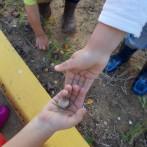 escola infantil municipal Ninos La Font d'En Carròs (13)