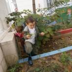 escola infantil municipal Ninos La Font d'En Carròs (28)