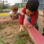 escola infantil municipal Ninos La Font d'En Carròs (29)